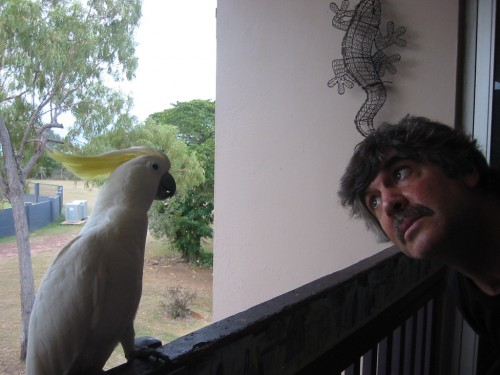 Dana & Cockatoo3